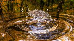 Wasser - lebenswichtiges Elixier und Schönheitstrunk in einem